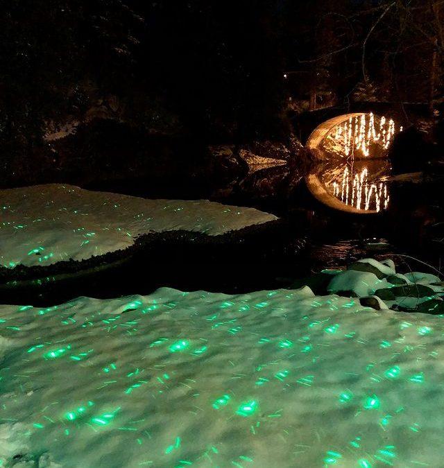 Glensheen Mansion: Spirit of the Lights