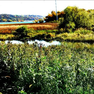 St. Paul reaches for Waterfront Potential with a New Nature Center, Mississippi River Balcony…