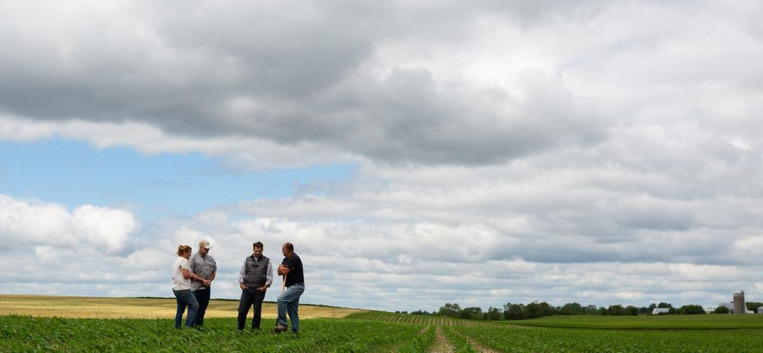 The Nature Conservancy: Trees. Water. Soil. Nature and Climate Solutions for Minnesota